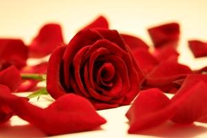 Spa Day – San Valentino alle Terme con cena romantica  € 59,50